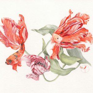 Poissons tulipes - Aquarelle de Jordane Desjardins