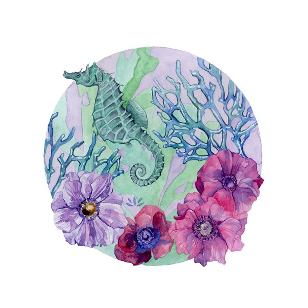 Hippocampe anémones aquarelle sur papier Jordane Desjardins