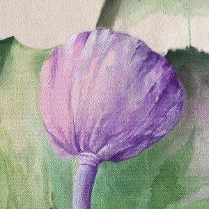 Détail d'une graine de lotus