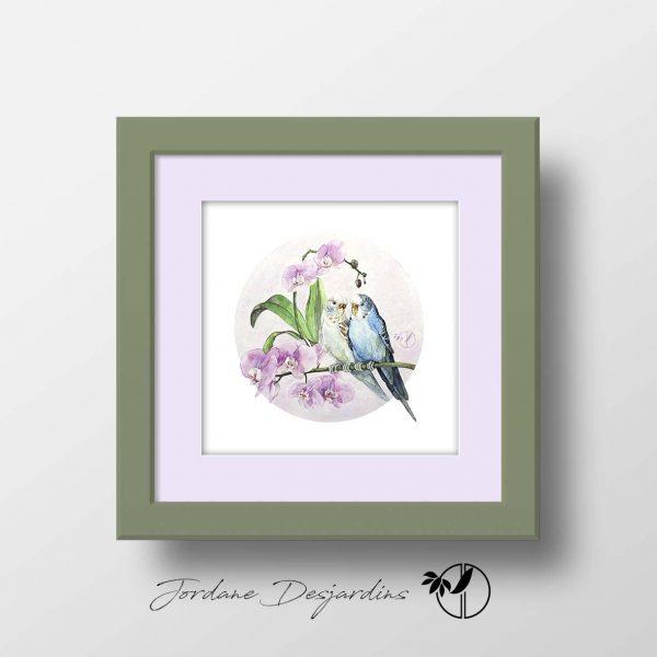 Couple de perruches ondulées branche d'orchidées aquarelle originale de Jordane Desjardins