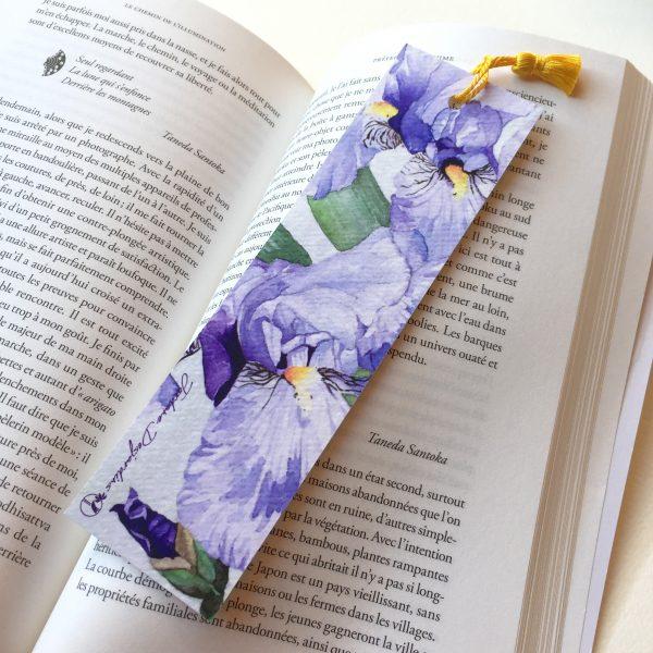 Iris bleu violet livre