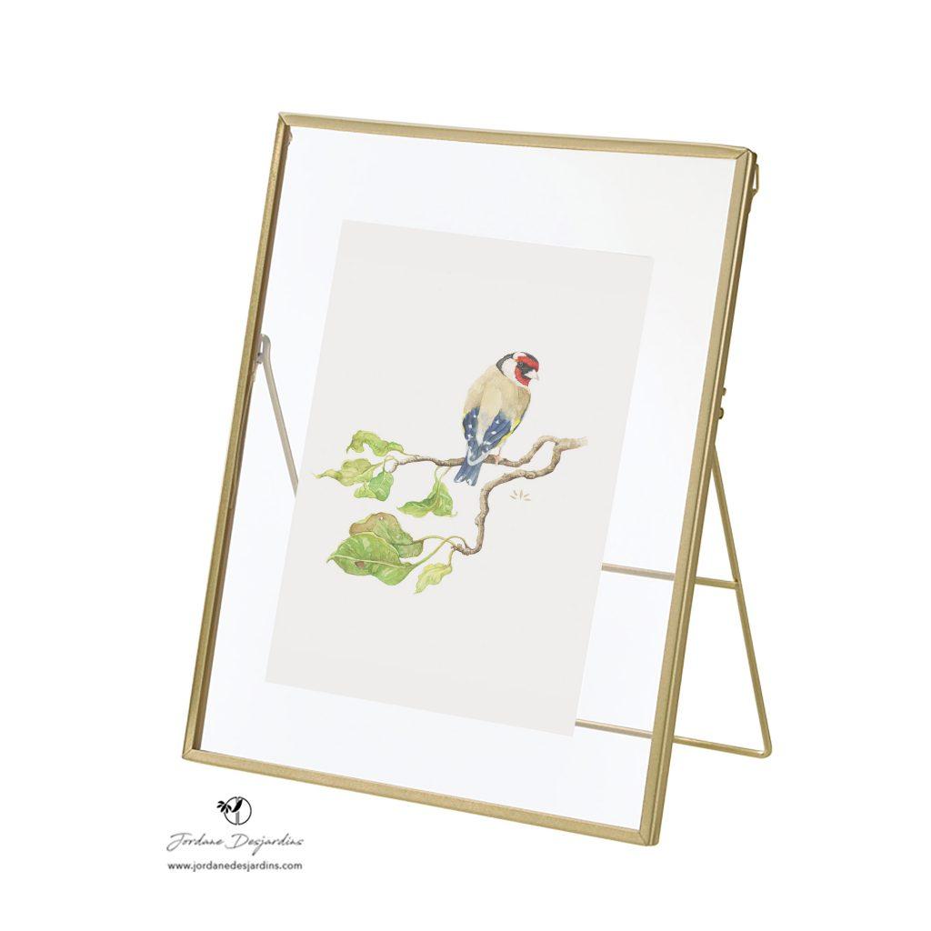 cadre métallique doré - Aquarelle Chardonneret élégant de Jordane Desjardins