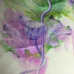 Feuille et graine de lotus