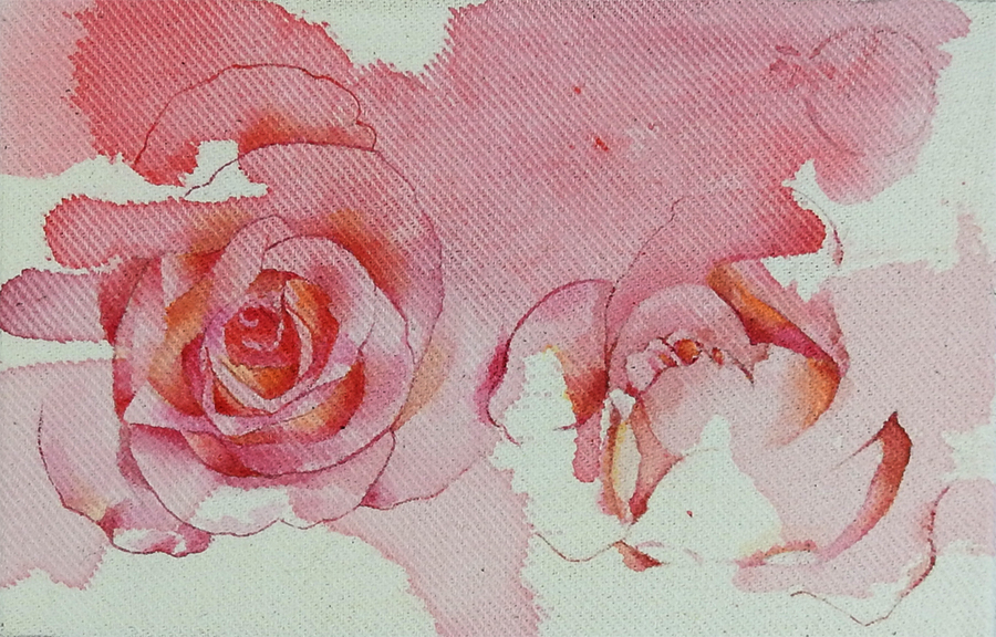 duo-roses