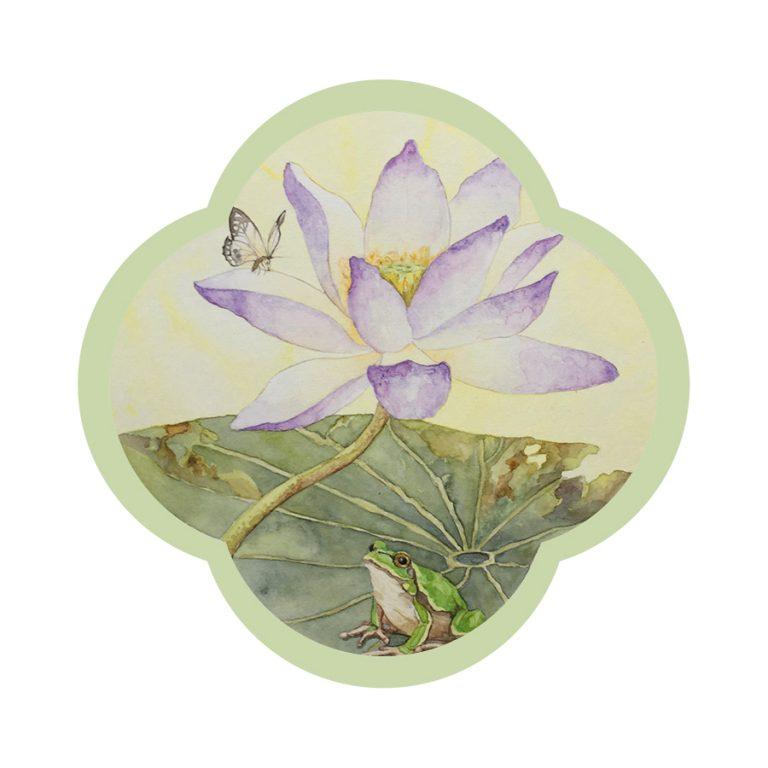 Lotus-grenouille