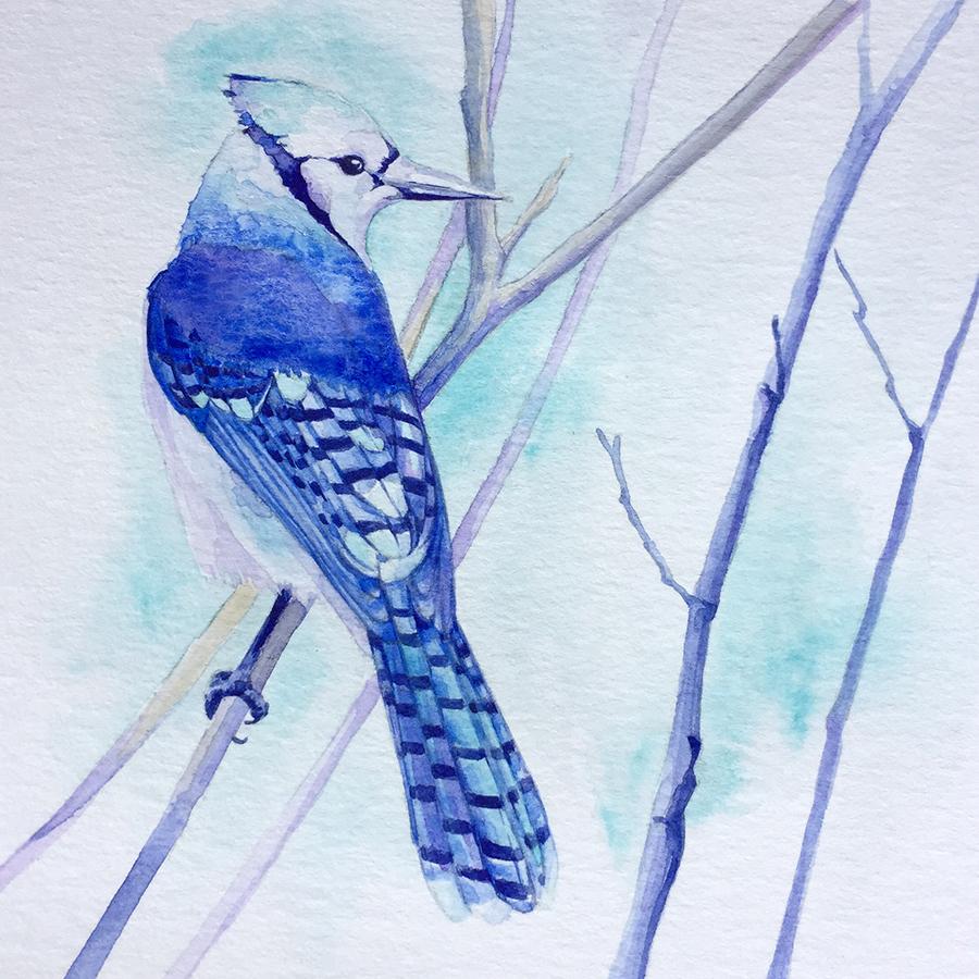 oiseau-prunier