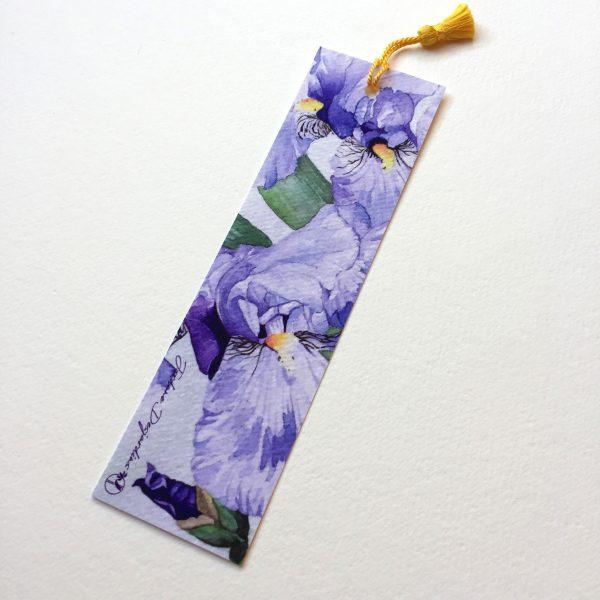 Iris bleu-violets