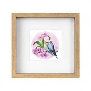 perruches et orchidées - Aquarelle Jordane Desjardins